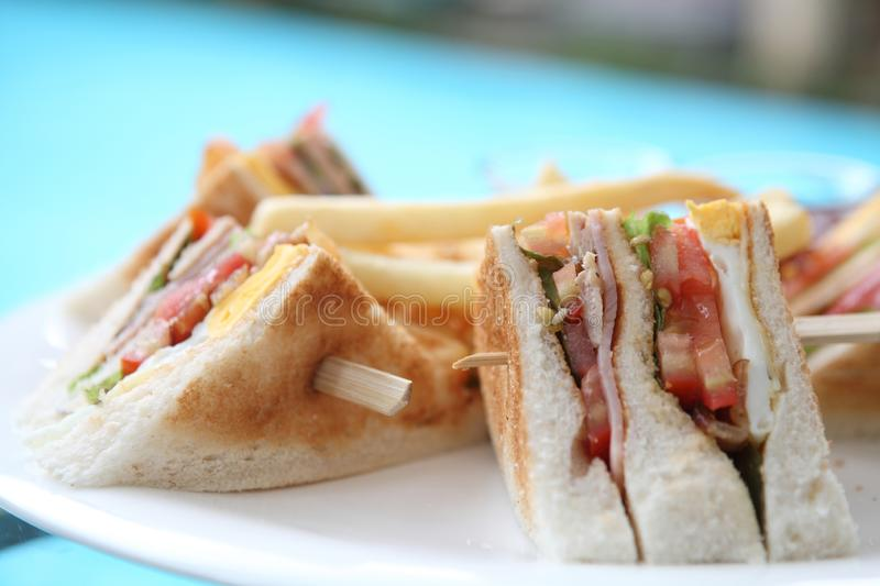Club sandwich. In close up royalty free stock images