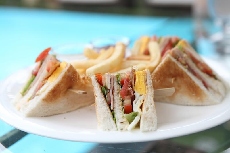 Club sandwich. On a plate in close up stock photography