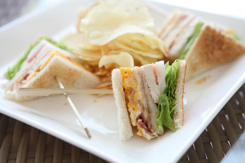 Club sandwich. On a plate stock images