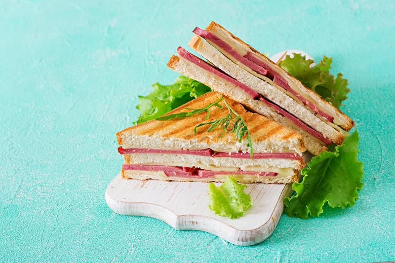Club sandwich - panini with ham and cheese. On light background. Picnic food royalty free stock photos