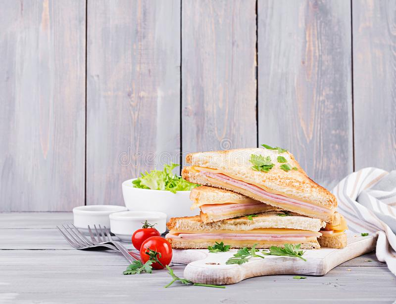 Club sandwich panini with ham, cheese and salad. Tasty breakfast royalty free stock photo