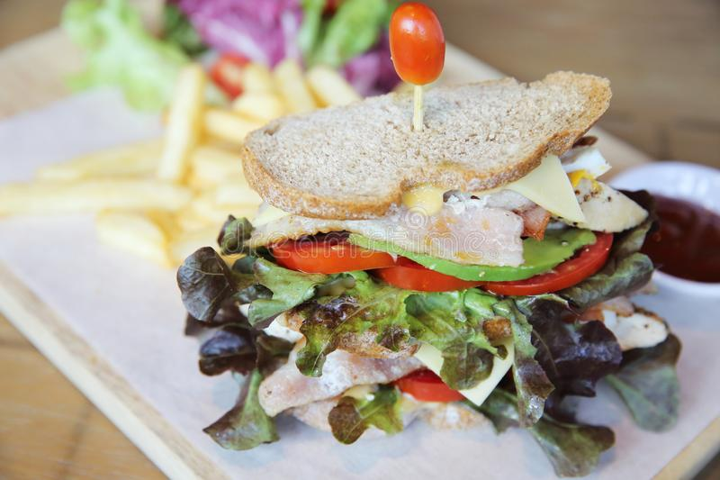 Club sandwich with on wood background. In close up royalty free stock image