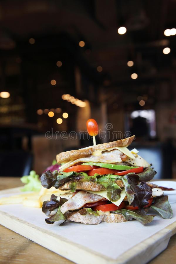 Club sandwich with on wood background. In close up royalty free stock photo