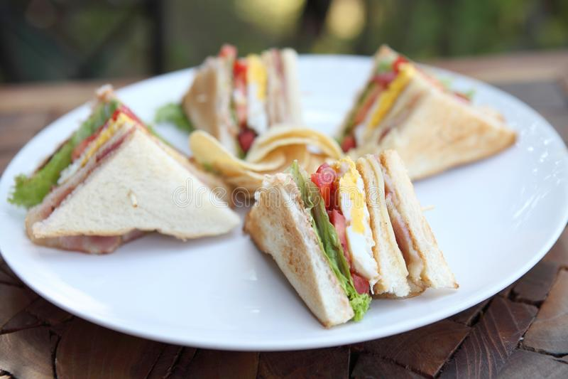 Club sandwich. In close up royalty free stock image