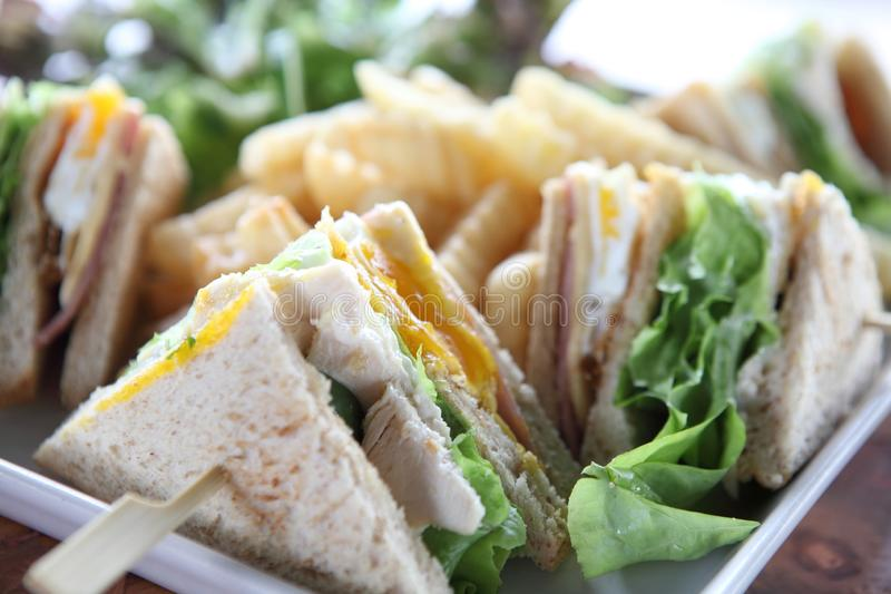 Club sandwich on a plate royalty free stock photo