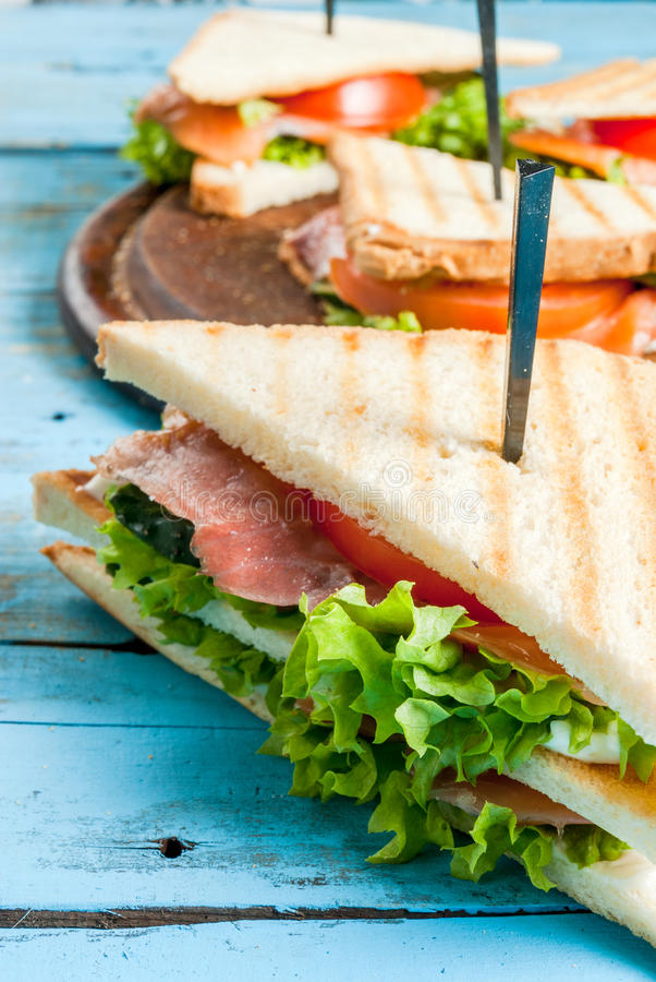 Club sandwiches with salmon royalty free stock photos