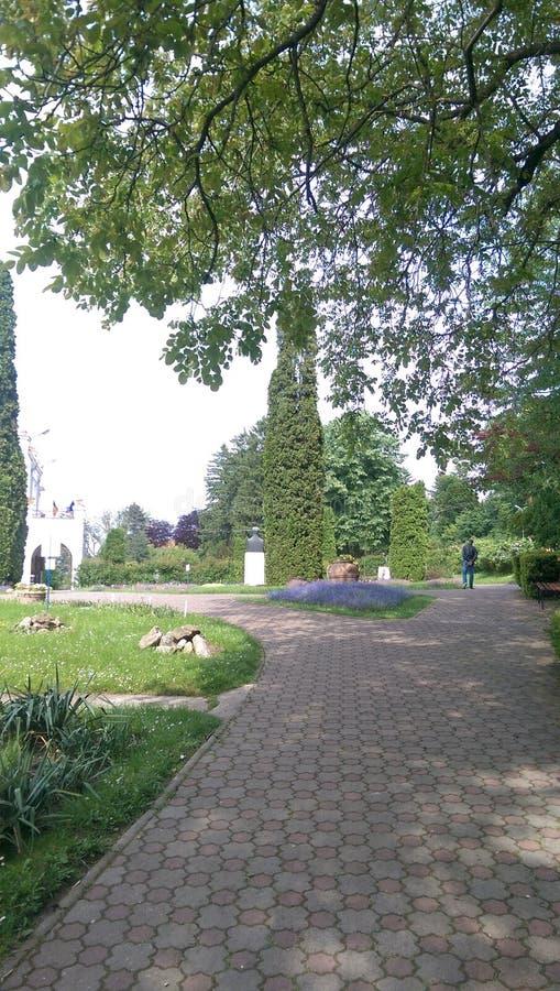 Cluj, Botanic Garden royalty free stock photo