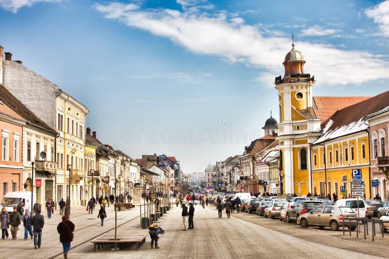 cluj i stadens centrum napoca royaltyfria bilder
