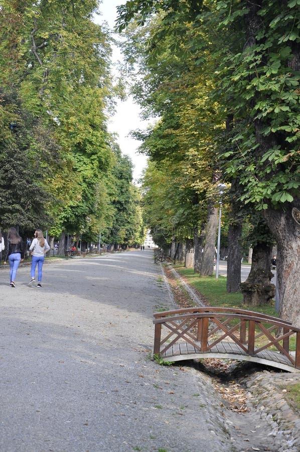 cluj RO, Wrzesień 24th: Central Park Główna aleja w cluj od Transylvania regionu w Rumunia zdjęcia stock