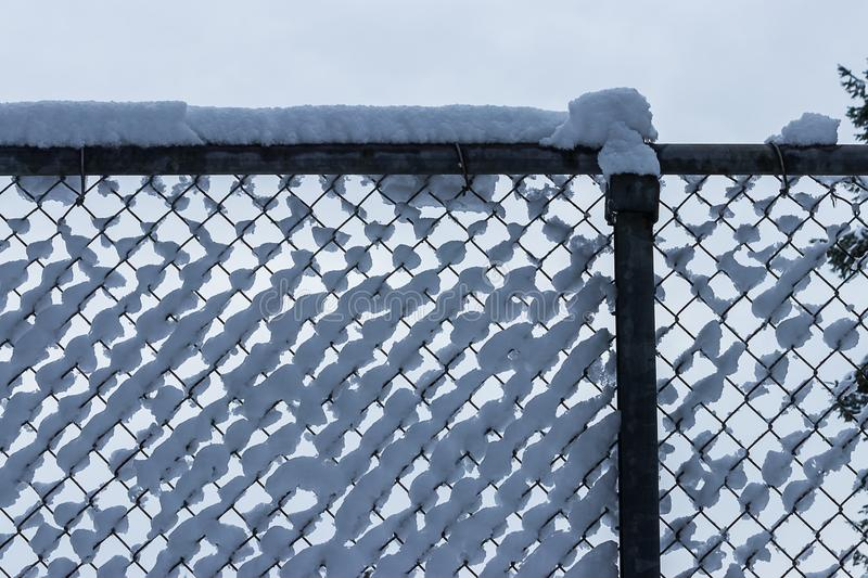 Clumps of fluffy white snow collected in a fence. Fluffy white snow collected on top of a chain link fence stock photo