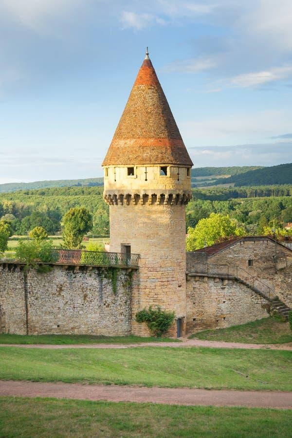 Cluny,法国-老防御塔 免版税库存照片