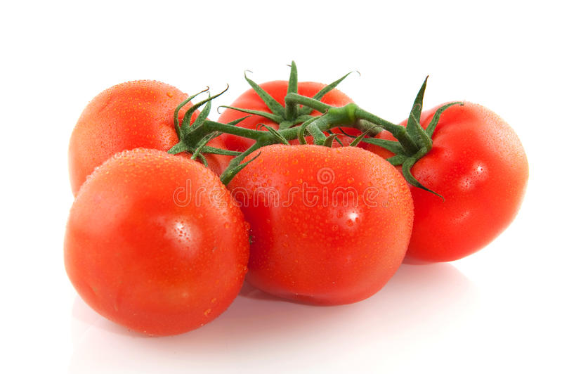 Cluster of fresh tomatoes royalty free stock photos