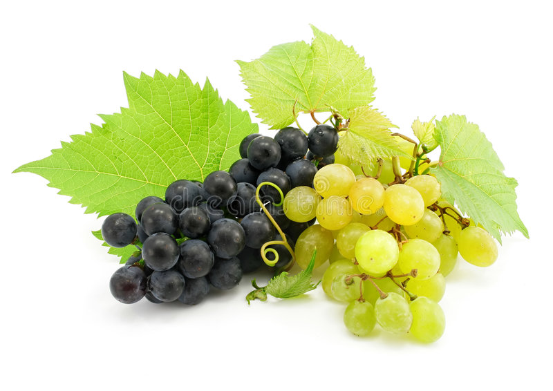 Cluster of green and blue grape isolated on white royalty free stock photography