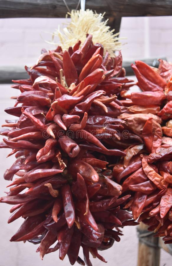 Cluster of Hanging Red Chili Peppers in New Mexico. Large cluster of hanging red chili peppers in New Mexico stock photos