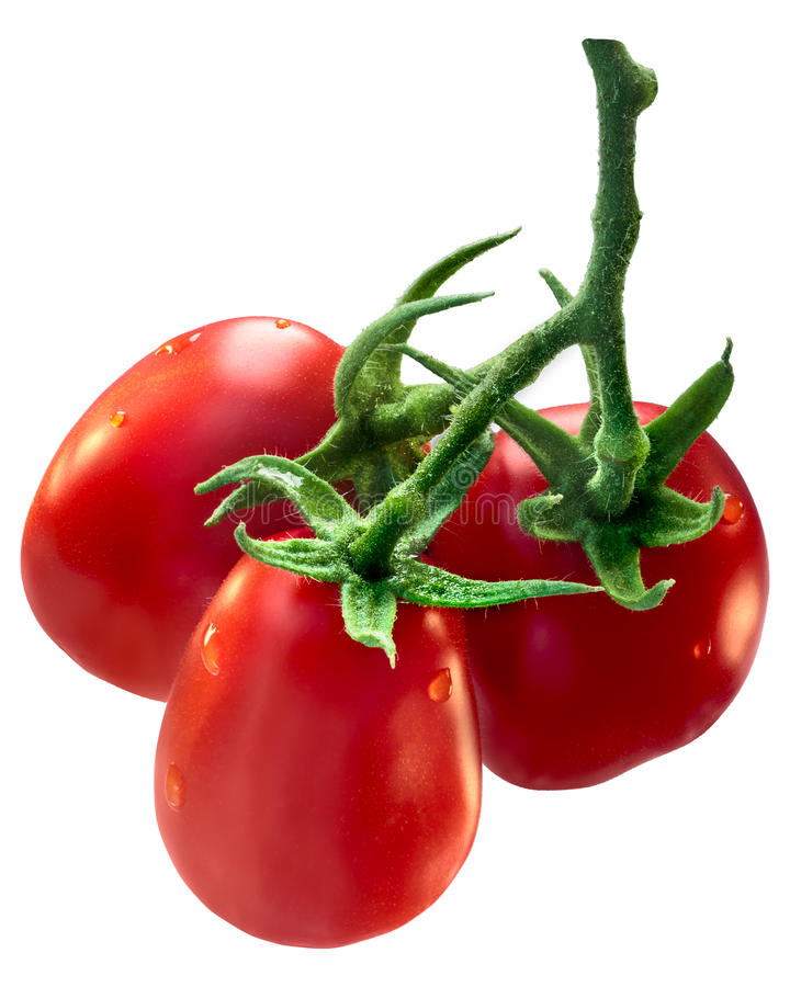 Cluster of plum Roma tomatoes, path stock photos