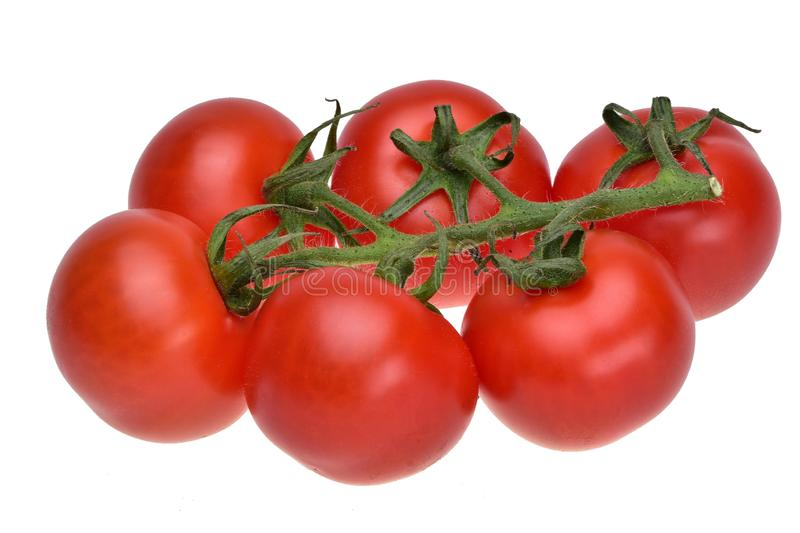 Cluster of ripe summer cherry tomatoes on a green stalk  close up royalty free stock photography