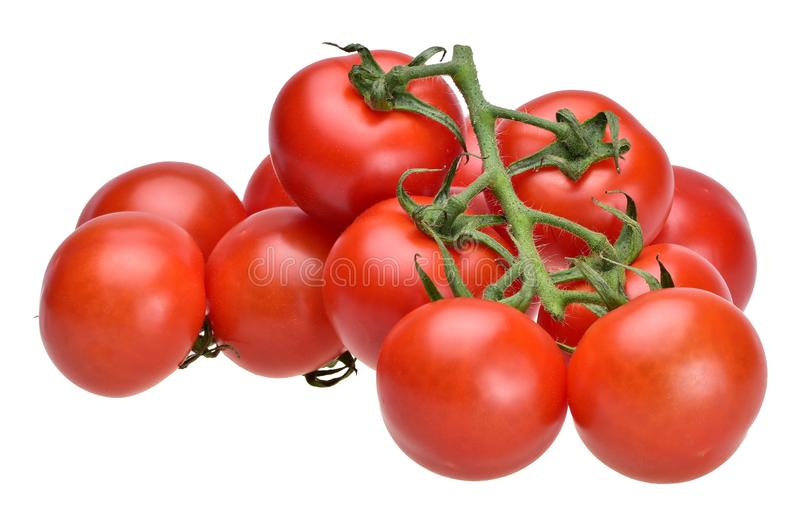 Cluster of ripe summer cherry tomatoes on a green stalk royalty free stock photo