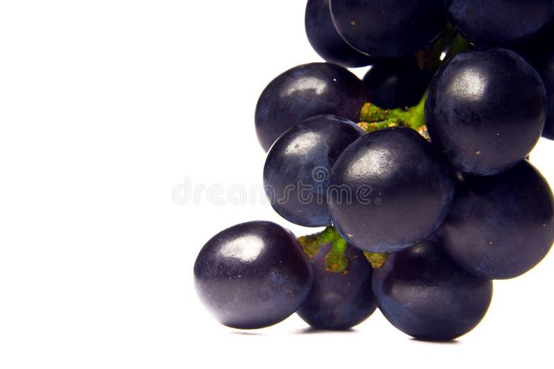 Cluster van wijnstok royalty-vrije stock afbeeldingen
