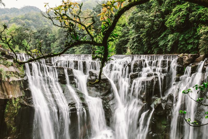 Cluster Waterfalls Surrounded With Trees stock images