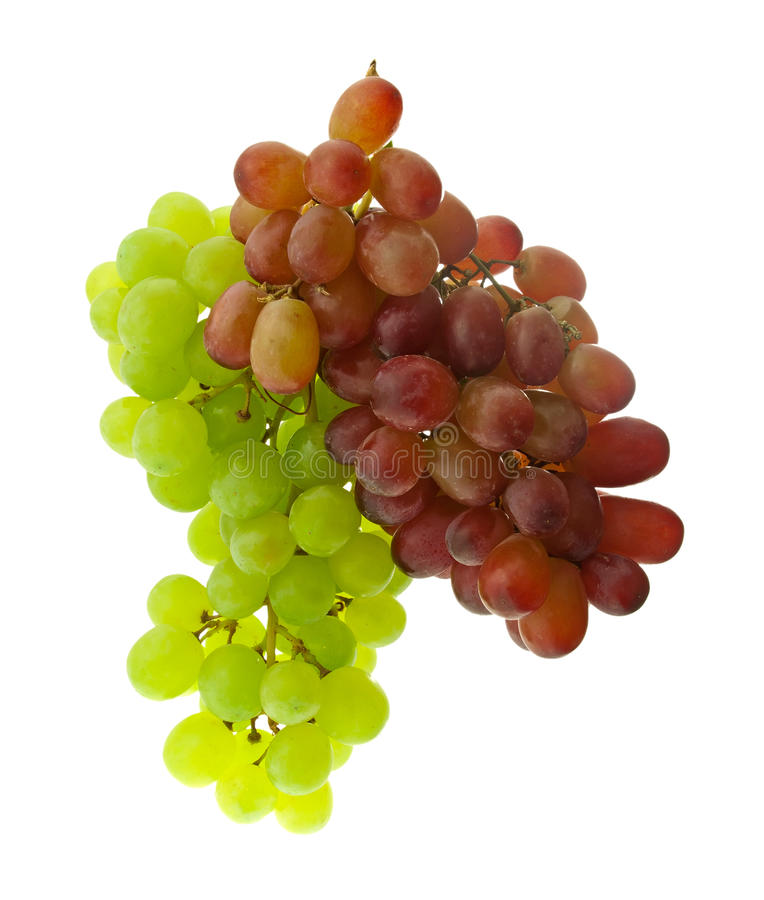 The clusters of green and dark blue grapes. royalty free stock image