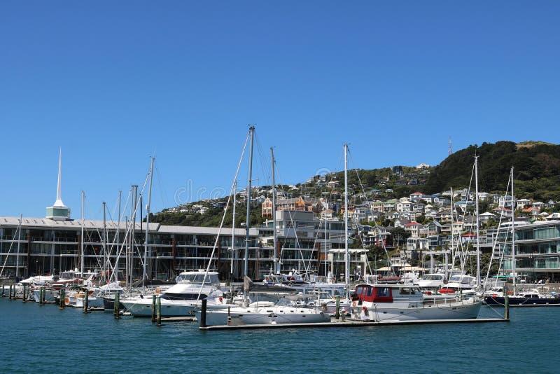 Clyde Quay nabrzeże z jachtami w marina Wellington obraz stock