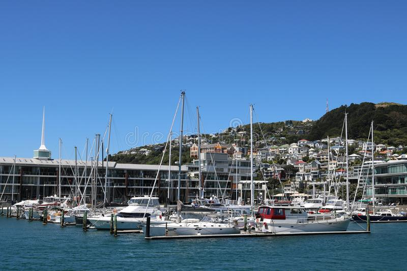 Clyde Quay Wharf with yachts in marina Wellington stock image
