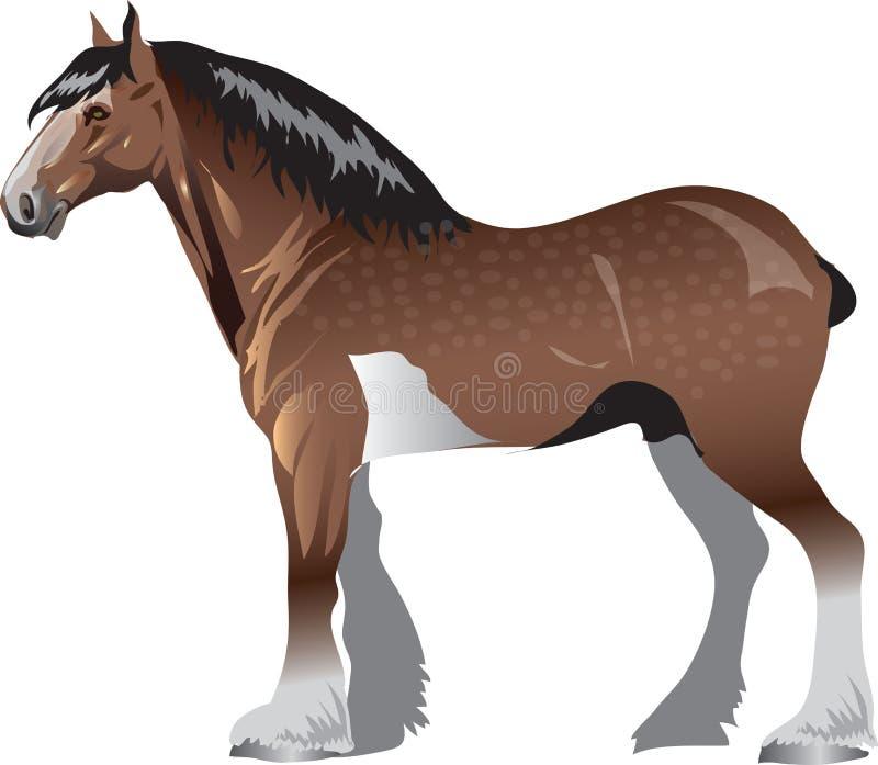 Clydesdale koń, Stalion Galop, zwierzę - Wektorowa ilustracja royalty ilustracja