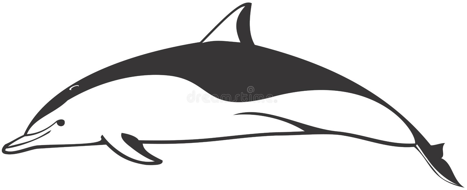 Clymene Dolphin stock illustration