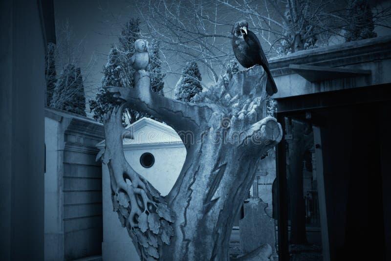 Cmentarniani noc ptaki obrazy royalty free