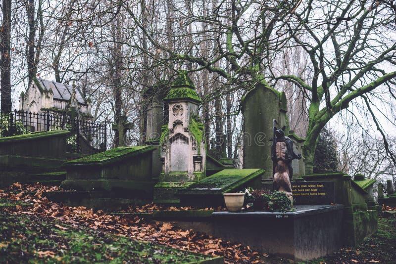 Cmentarniani zabytki i grobowowie w Ghent, Belgia fotografia stock