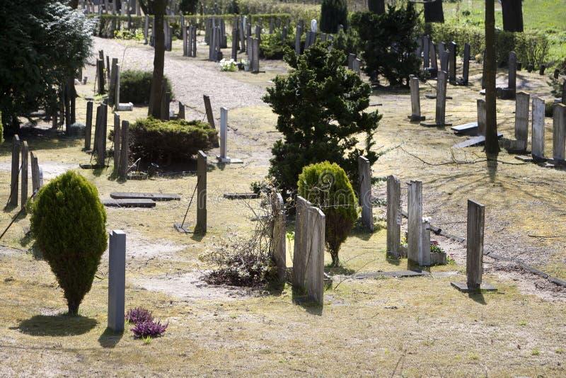 Download Cmentarz obraz stock. Obraz złożonej z cmentarz, rośliny - 53781249