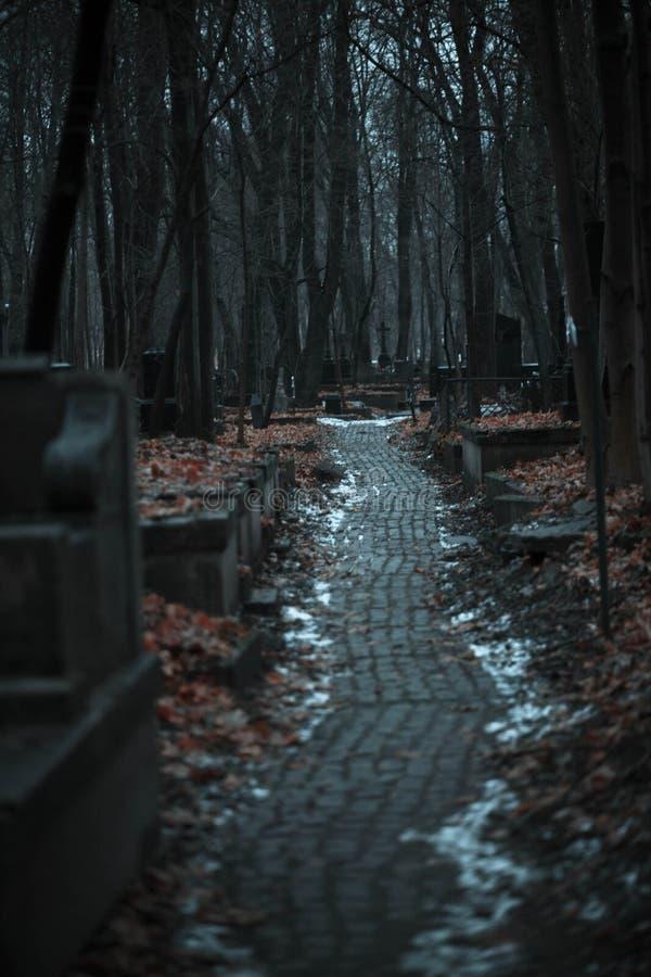 cmentarz, brukująca ścieżka, jesień, grób obrazy royalty free