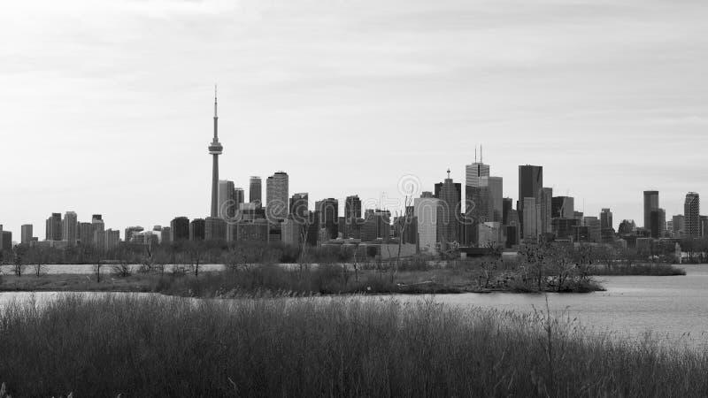 CN Toren en de horizon van Toronto bij nacht stock fotografie
