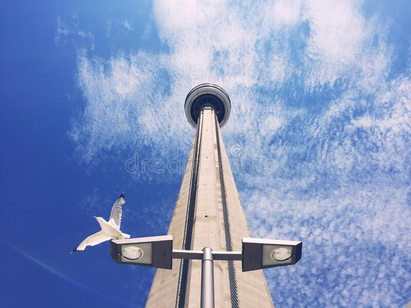 CN tower against blue sky stock images