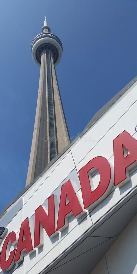 CN Tower Toronto. royalty free stock image