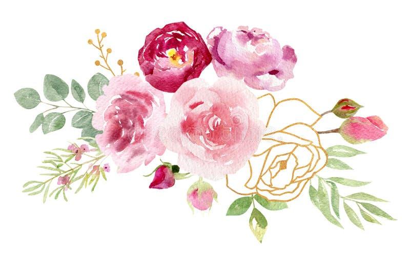 Собрание покрашенных рукой роз цветков акварели иллюстрация штока