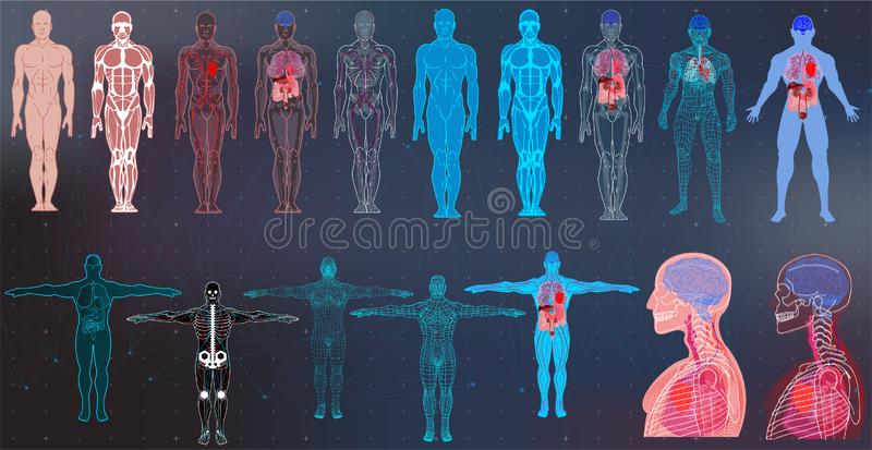 Собрания тела рентгеновского снимка в футуристическом стиле HUD SCI иллюстрация штока