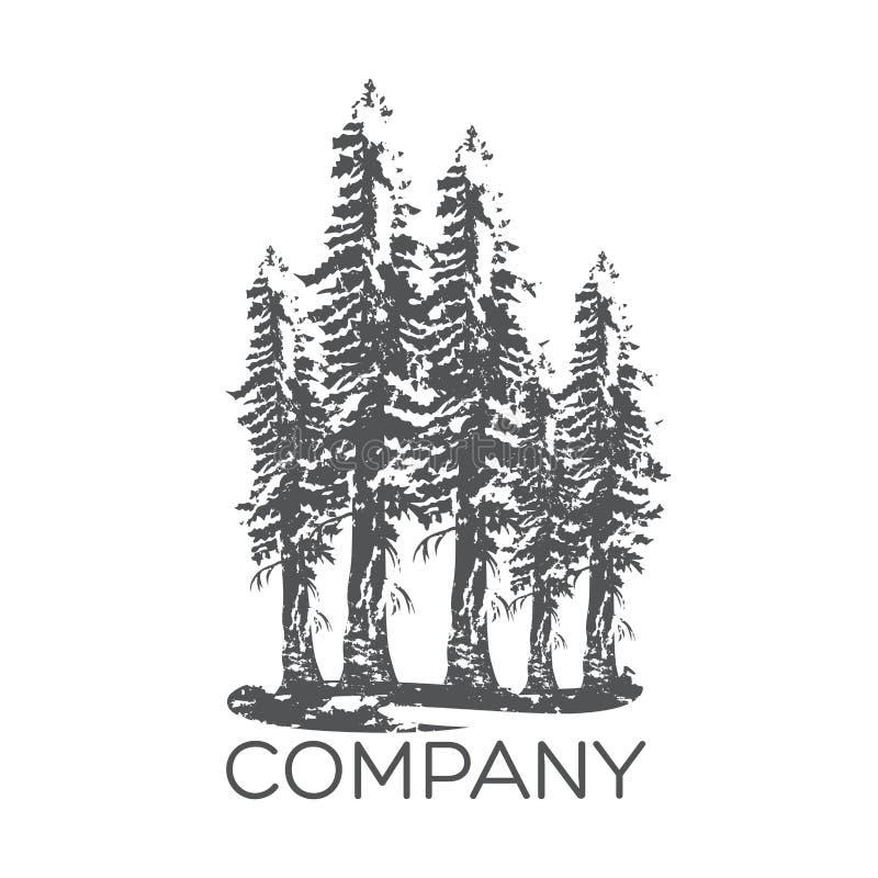 Современный логотип дерева секвойи также вектор иллюстрации притяжки corel иллюстрация вектора