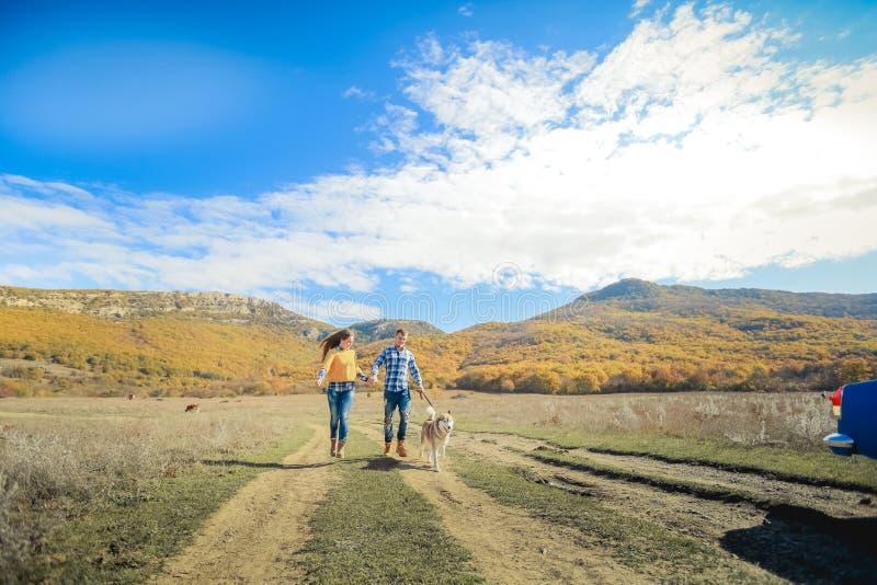 Соедините луг сельской местности захода солнца осени собаки retriever прогулки держа руки стоковое фото rf