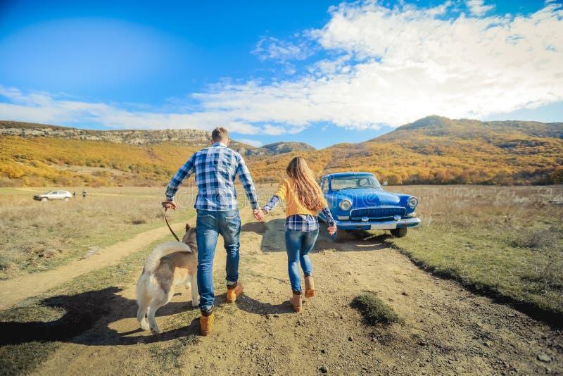 Соедините луг сельской местности захода солнца осени собаки retriever прогулки держа руки стоковая фотография