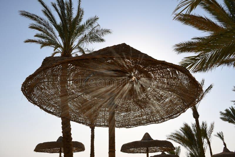 Солнце излучает светить через отверстия деревянного зонтика на пляже стоковые фото