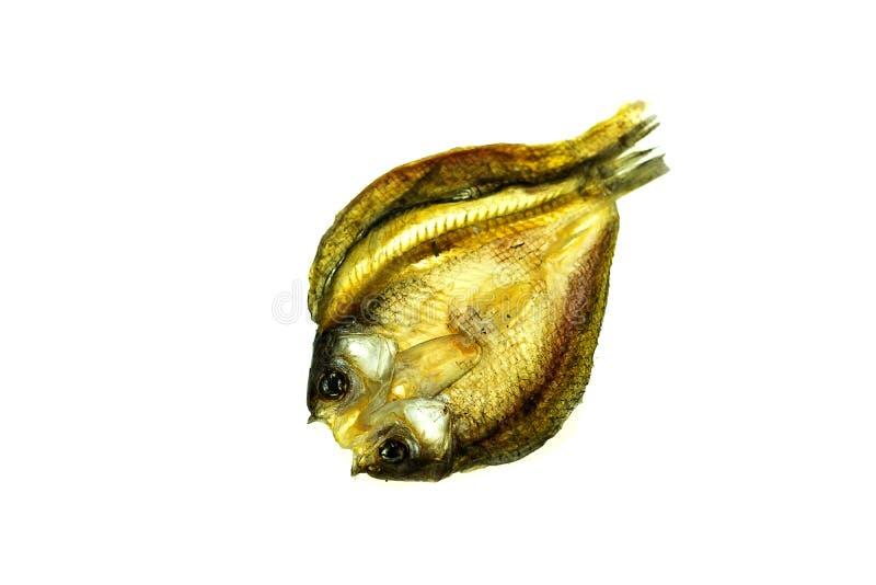 Солёные высушенные рыбы стоковые изображения rf