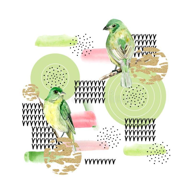 состав коллажа конспекта акварели с кругами текстуры краски в нашивке красных и зеленых, яркого блеска текстуры, точках, птицах и иллюстрация штока
