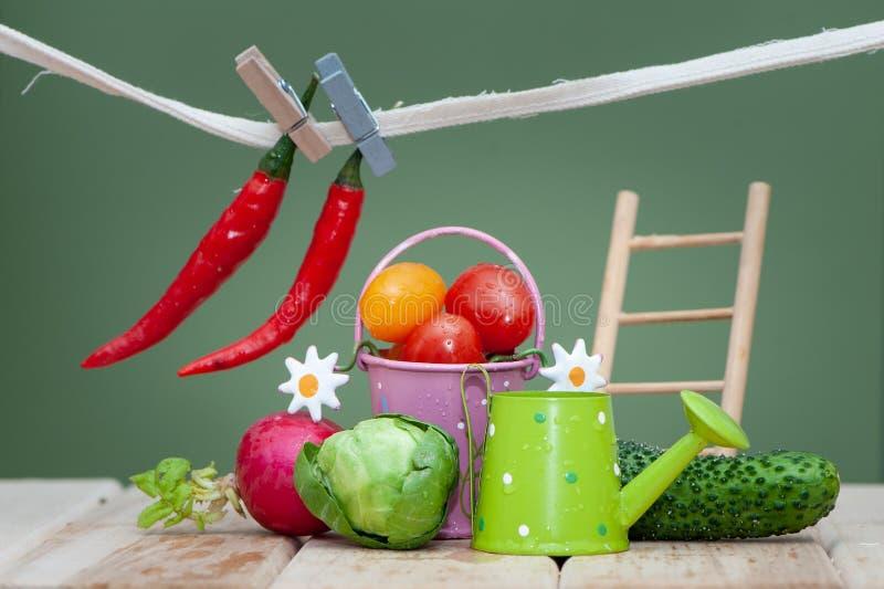 Состав небольших фруктов и овощей и аксессуаров сада Органический био свежий овощ, стоковые фотографии rf