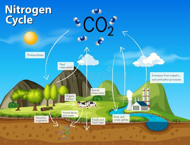 CO2 de cycle d'azote de la Science illustration de vecteur