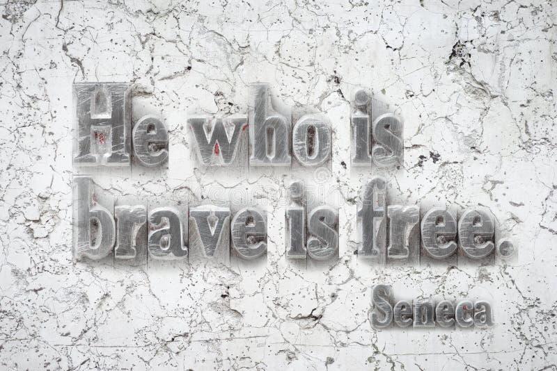 Co jest odważnym Seneca zdjęcia stock