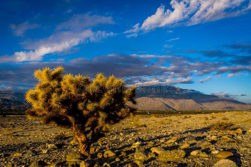 Coachella dolina, Kalifornia fotografia stock