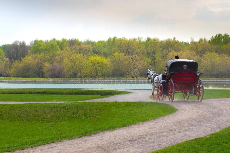 Coachman in cloak sits in coach with horse and hold reins in spring park stock photo