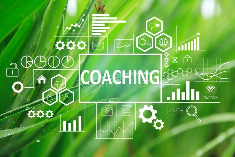 Coachning i affärsidé fotografering för bildbyråer