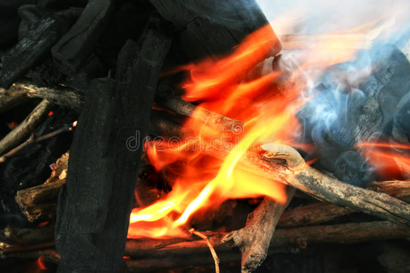 Download Coal and fire stock photo. Image of camping, bonfire - 21637462